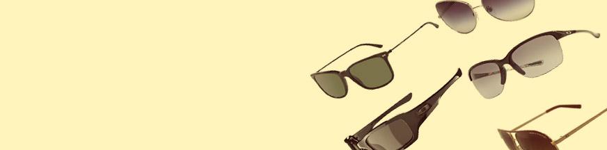 Bench Glasses