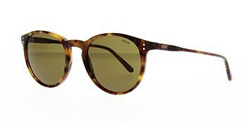 Polo Ralph Lauren Sunglasses PH4110 501773 50