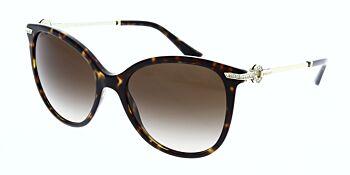 Bvlgari Sunglasses BV8201B 504 13 55