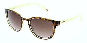Cath Kidston Sunglasses CK5007 106 52