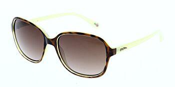 Cath Kidston Sunglasses CK5010 106 55