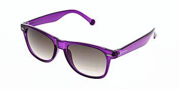 Converse Sunglasses H010 Purple 55