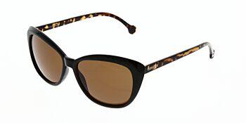 Converse Sunglasses H047 BlackTortoise 56