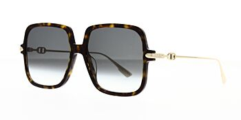 Dior Sunglasses DiorLink1 086 90 58