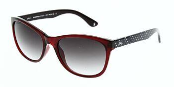 Joules Sunglasses Salcombe JS7011 260 56