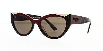 Prada Sunglasses PR03WS 07C0D1 55
