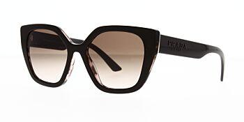 Prada Sunglasses PR24XS ROL0A6 52